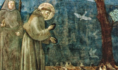 Giotto St. Francis Preaches to the Birds 750
