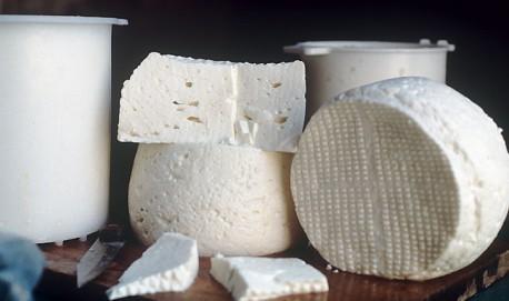 Curso de fabricação de derivados do  leite é uma dos ofertados (Imagem ilustrativa)