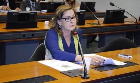 Deputada na Comissão de Desenvolvimento Urbano (CDU) Fotos: Assessoria Parlamentar De. Dâmina Pereira
